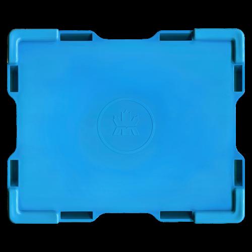 Leere hellblaue Monsterbox für  3/4 bis 1,5 oz RCM Silbermünzen