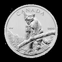 1 oz Silbermünze kanadischer Puma 2012 | Verfärbt und fleckig