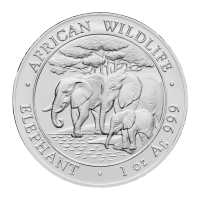 Pièce d'argent Éléphant d'Afrique somalien 2013 de 1 once