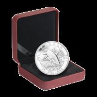 1/2 oz 2013 Orca Silver Coin