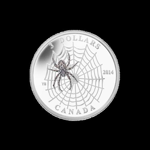 """Ein Spinnennetz aus der Vogelperspektive, mit einer Radnetzspinne in der Netzmitte und die Worte """"3 Dollars 2014 Canada""""."""