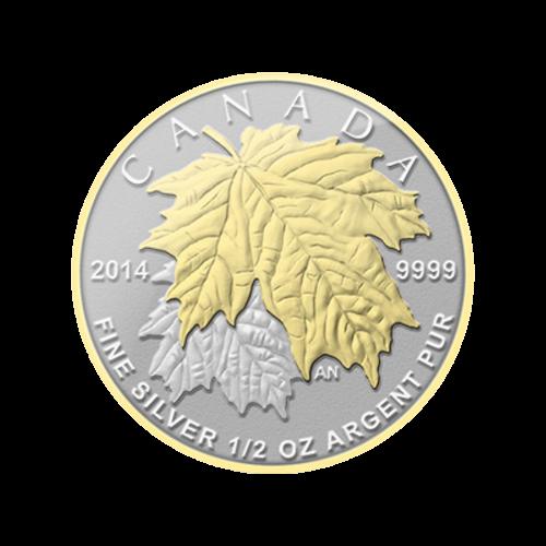 Vergoldete kanadische Silbermünzen - Ahornblatt Teilset - 2014