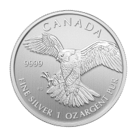 1 oz 2014 Birds of Prey Series | Peregrine Falcon Silver Coin