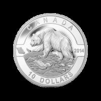 1/2 oz Silbermünze - O Kanada Serie - Grizzlybär - 2014