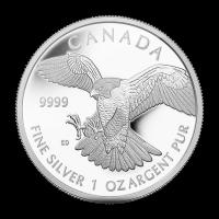 1 oz Greifvögel Serie | Exotischer Falken geprüfte Silbermünze - 2014 limitiert