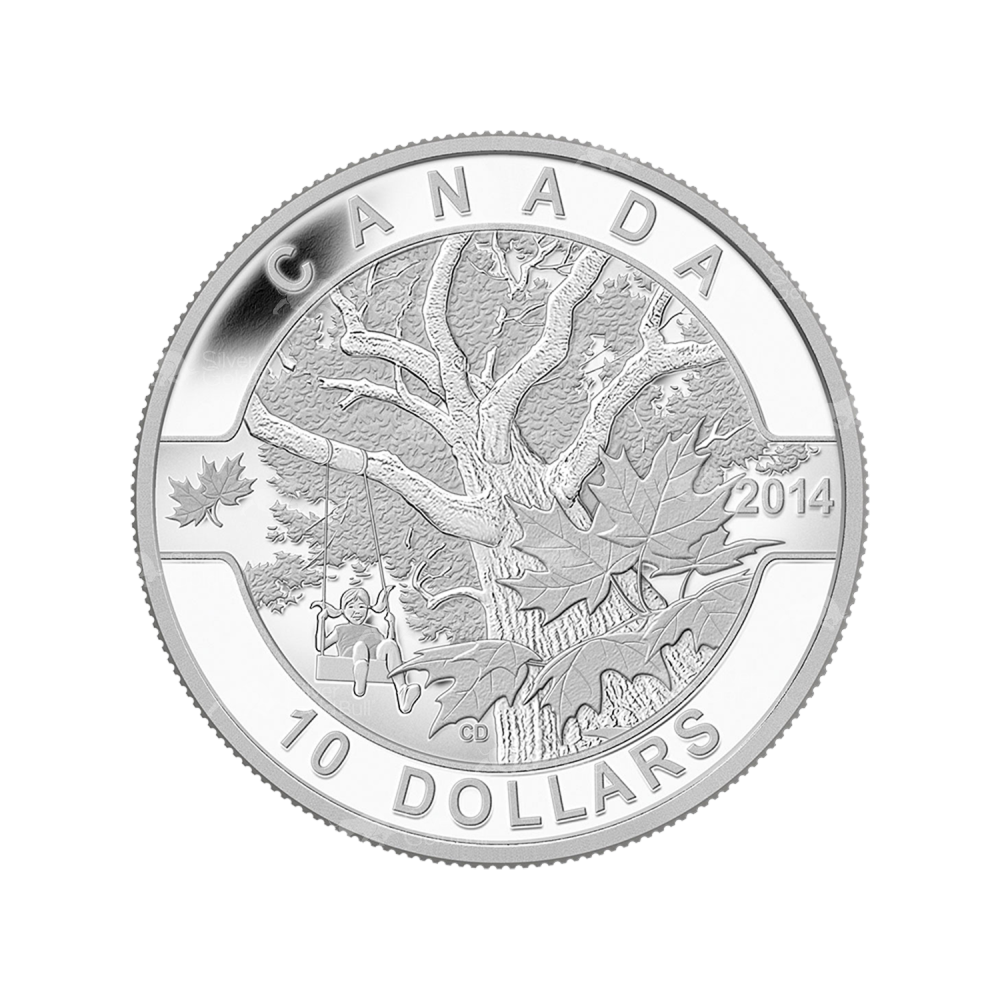 2013 O Canada Series Summer Fun 1//2oz .9999 Fine Silver $10 Coin w// Box /& COA