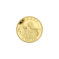 1/10 oz Goldmünze - O Kanada Serie - Kanadagans - 2014