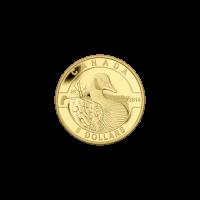 Série O Canada 2014 de 1/10 once – Pièce d'or Bernache du Canada