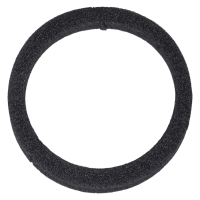38 mm Ring Insert for Coin Capsule