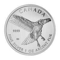 1oz 2015 Birds of Prey Series | Red-Tailed Hawk Silver Coin