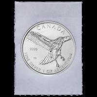 1 oz eingeschweißte Silbermünze Greifvogel Serie 2015   Rotschwanzbussard