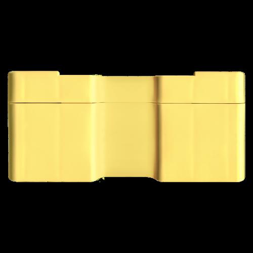 Leere gelbe Monsterbox für 3/4 bis 1,5 oz Silbermünzen von RCM