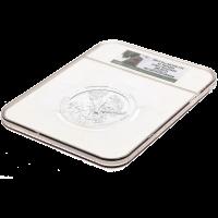 5 oz Silbermünze - Wunderschönes Amerika | El Yuque NGC MS-69 (PL) - 2012