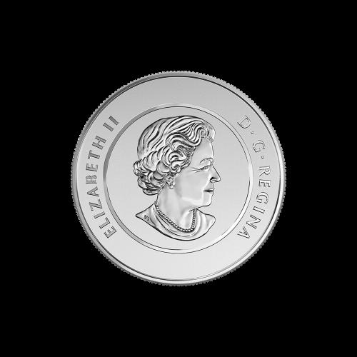 """Ein Lebkuchenmann, wie er, mit einer Zuckerstange in der Hand einen Hügel herunterschlittert und die Worte """"Canada 2015 Fine Silver 9999 Argent Pur 20 Dollars"""" (Kanada 2015 Feinsilber 9999 reines Silber 20 Dollar)."""