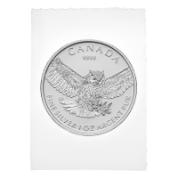 1 oz 2015 Birds of Prey Series | Grote Gehoornde Uil Flex Sealed Zilveren Munt