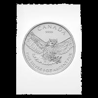 1 oz eingeschweißte Silbermünze - Greifvögel-Serie   Virginiauhu - 2015