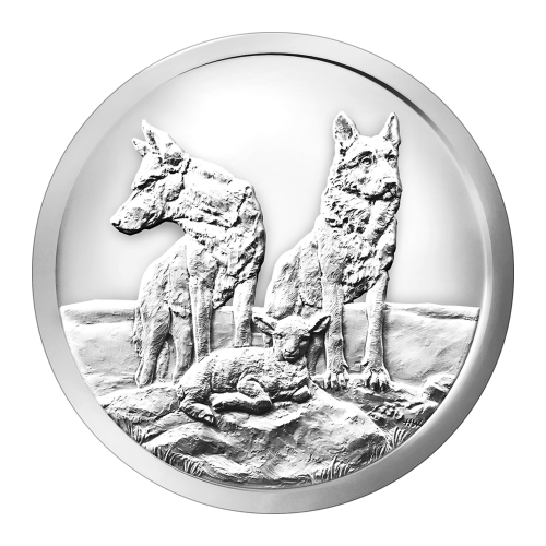 Zwei Wölfe die schützend über einem Babylamm stehen