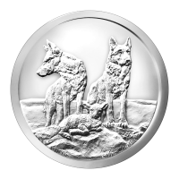 Ronde d'argent Silver Shield « Aware and Prepared » 2015 de 1 once
