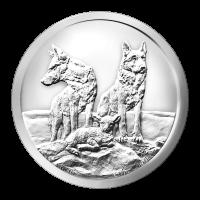 1 oz Silbermedaille Silver Shield - Aufmerksam und Vorbereitet - 2015