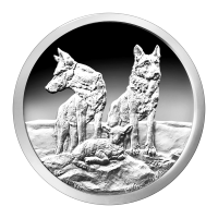 1 oz 2015 Silver Shield Aware and Prepared proof-aktig sølvround