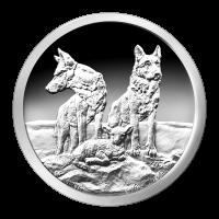 1 oz Silbermedaille Silver Shield - Aufmerksam und Vorbereitet - 2015 Zustand: Spiegelglanz