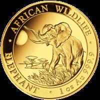 1 oz 2016 Somalische Afrikaanse Olifant Gouden Munt