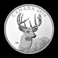 1 oz Silbermünze - Weißwedelhirsch: Porträt - limitiert 2014