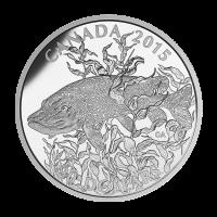 1 oz Silbermünze - nordamerikanisches Sportfischen: Europäischer Hecht - limitiert 2015