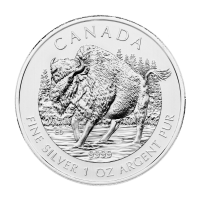 1 oz 2013 Canadian Wood Bison Zilveren Munt