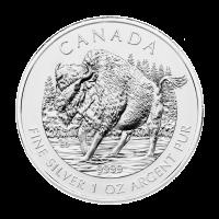 1 oz Silbermünze - kanadischer Waldbison - 2013