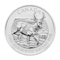 Moneda de Plata Antílope Berrendo Canadiense 2013 de 1 oz