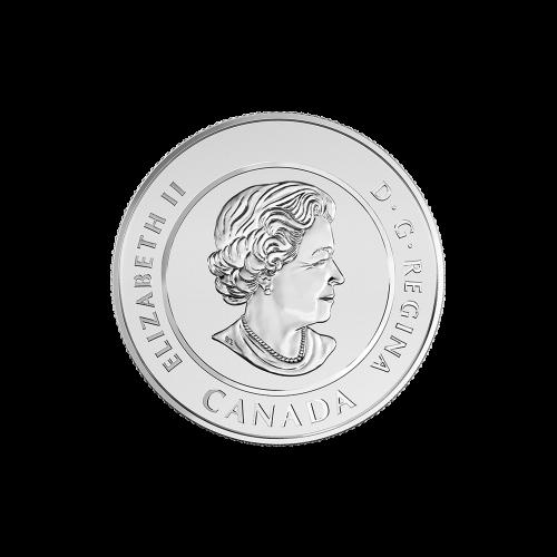 """Angreifender Tyrannosaurus Rex, mit offenem Maul und die Worte """"Canada 2016 Fine Silver 9999 Argent Pur 20 Dollars"""" (Kanada 2016 Feinsilber 9999 reines Silber 20 Dollars)."""