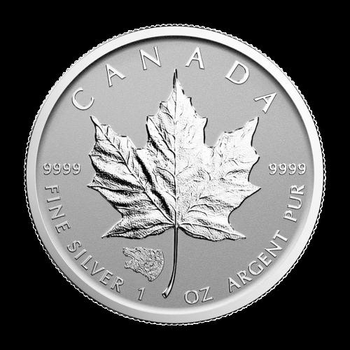 1 oz Silbermünze - kanadisches Ahornblatt Graubär Sonderprägezeichen - Polierte Platte (invertiert) 2016