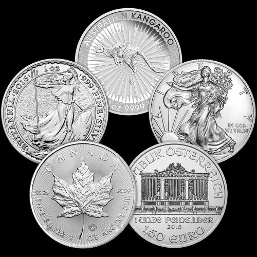 1 oz Silbermünze unserer Wahl - Regierungsgeprägt - nicht im Umlauf gewesen