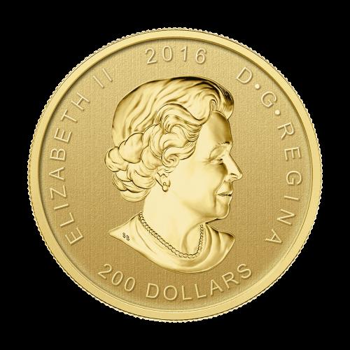 """Ein brüllender Graubär und die Worte """"Canada Fine Gold 99999 1 oz OR PUR"""" (Kanada Feingold 99999 1 oz ODER REIN)."""