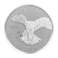 1oz 2016 Birds of Prey Reverse Proof Series | Peregrine Falcon Silver Coin