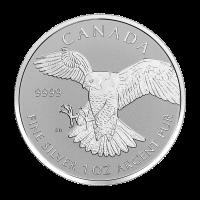 1 oz Silbermünze Greifvögel Serie   Exotischer Falken - Polierte Platte (invertiert) 2016