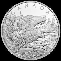 1/2 kg Silbermünze - Brüllender Graubär - 2016 limitiert