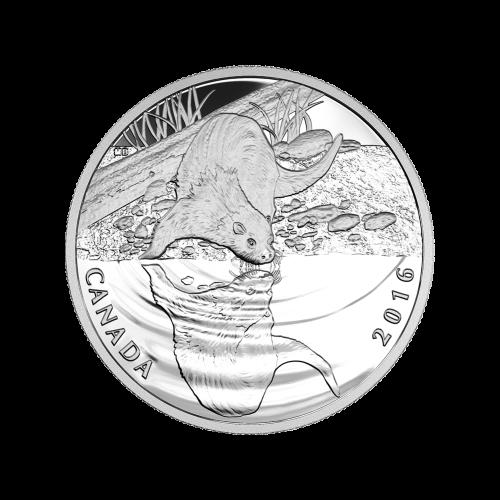 """Abbild von Königin Elisabeth II. und die Worte """"Elizabeth II D.G.Regina 10 Dollars""""."""