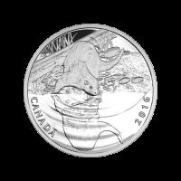 1/2 oz Silbermünze - Reflexionen der Tierwelt | Otter - 2016 limitiert