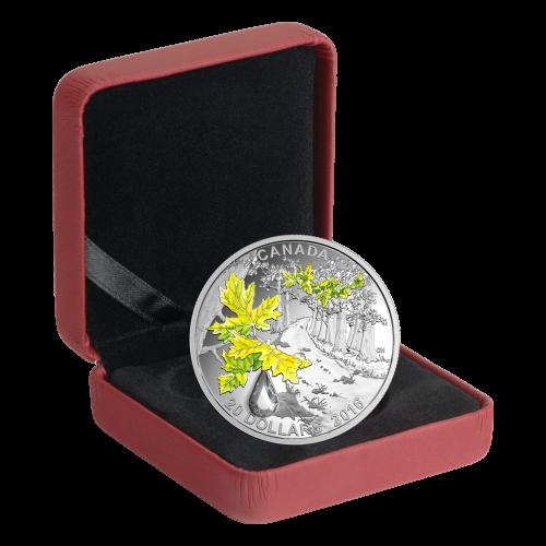 1 oz farbige Silbermünze Juwel des Regens | Großblättriger Ahorn 2016