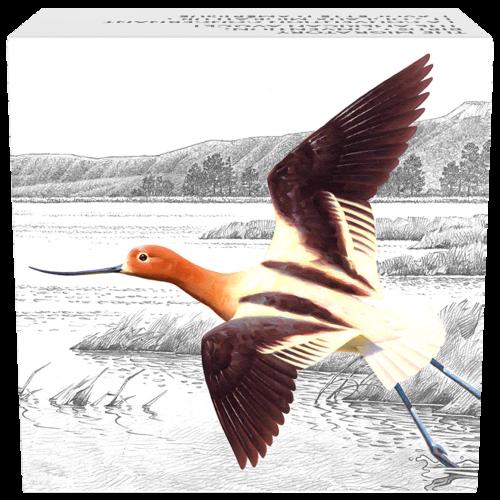1 oz farbige Silbermünze Abkommen zur Erhaltung von Wandervögeln | Amerikanischer Säbelschnäbler 2016