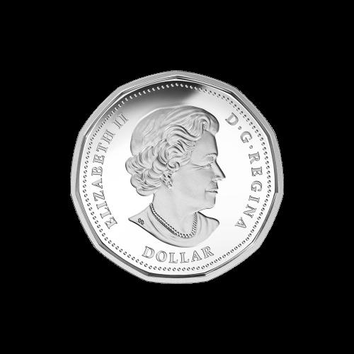 """Ein Eistaucher landet auf dem Wasser, das Olympische und Paralympische Logo und die Worte """"Canada 2016 Lucky Loonie Dollar Porte-Bonheur"""""""