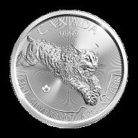 Serie Depredador 2017 de 1 oz | Moneda de Plata Lince