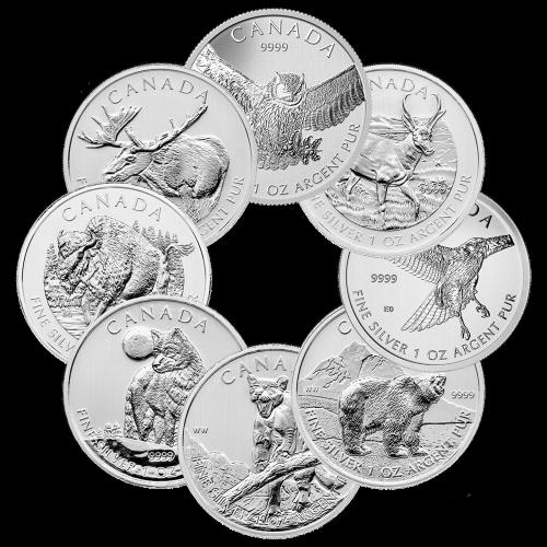 1 oz Royal Canadian Mint Silbermünze unserer Wahl - Zufallsjahr | Verfärbt und fleckig