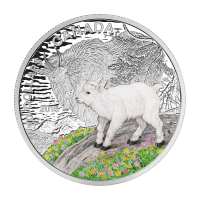 2015 RCM Baby Animals | Mountain Goat Coin and Stamp Set