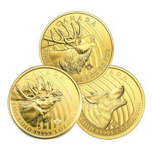 1 oz Random Year Call of the Wild Series | Damaged Certicard Gold Coin