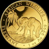 Pièce d'or Éléphant d'Afrique somalien 2017 de 1 once