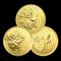 1 oz Random Year Call of the Wild Series Gold Coin