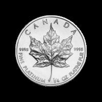 1/4 oz Random Year Canadian Maple Leaf Platinum Coin